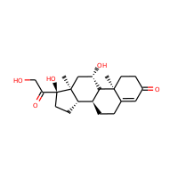 HYDROCORTISONE